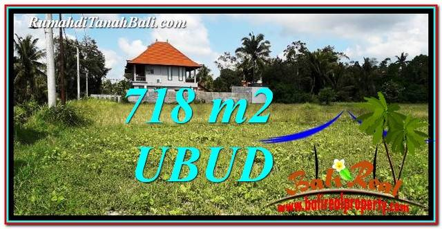 Magnificent Sentral Ubud 718 m2 LAND FOR SALE TJUB767