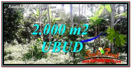 FOR SALE Magnificent PROPERTY LAND IN UBUD TJUB747