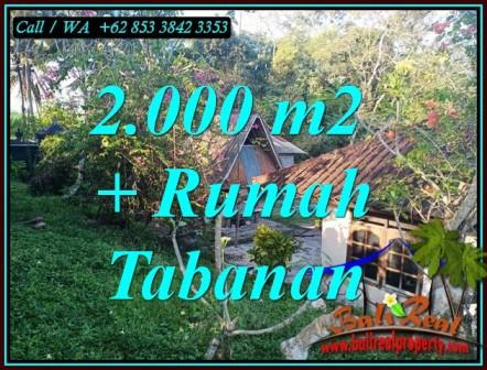 Magnificent LAND SALE IN TABANAN BALI TJTB455