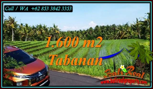 Magnificent LAND IN SELEMADEG BARAT FOR SALE TJTB471