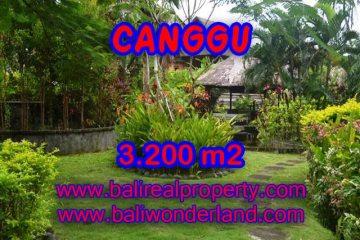 Land in Canggu for sale, Stunning view in Canggu Bali – TJCG129