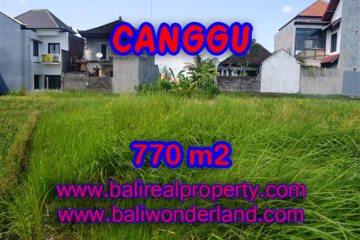 Land in Bali for sale, Stunning view in Canggu Bali – TJCG148