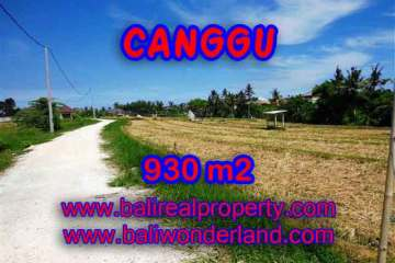 Land for sale in Bali, Fantastic view in Canggu Pererenan – TJCG146
