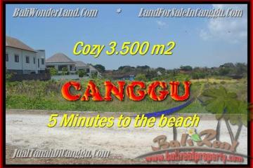 Beautiful LAND FOR SALE IN Canggu Kayutulang TJCG165