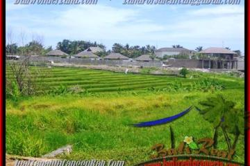 FOR SALE Exotic LAND IN Canggu Cemagi TJCG137