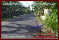 LAND IN Canggu Pererenan FOR SALE TJCG181