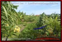 Affordable Canggu Pererenan LAND FOR SALE TJCG182