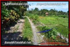 Affordable PROPERTY LAND IN Canggu Pererenan BALI FOR SALE TJCG184