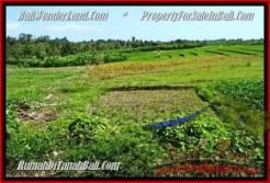Exotic PROPERTY Canggu Pererenan BALI LAND FOR SALE TJCG184