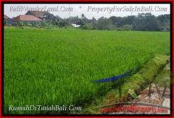 Magnificent PROPERTY LAND SALE IN Canggu Brawa BALI TJCG186
