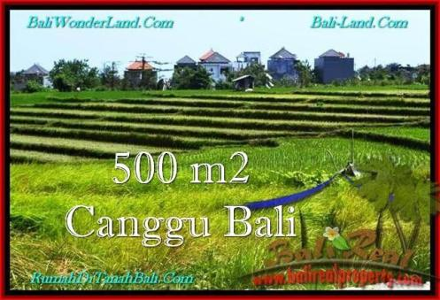 Affordable 500 m2 LAND FOR SALE IN CANGGU TJCG192