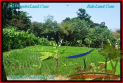 Exotic PROPERTY 1,100 m2 LAND FOR SALE IN CANGGU BALI TJCG193