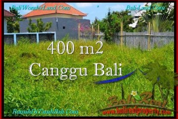 Magnificent LAND FOR SALE IN Canggu Pererenan BALI TJCG189