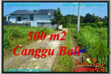 Exotic LAND FOR SALE IN Canggu Brawa BALI TJCG201