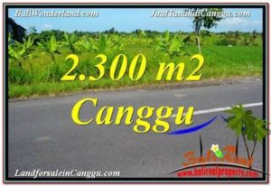 Exotic 2,300 m2 LAND IN CANGGU FOR SALE TJCG209