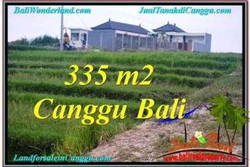 Magnificent 335 m2 LAND FOR SALE IN CANGGU BALI TJCG204