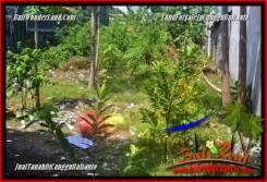 FOR SALE Magnificent LAND IN CANGGU BRAWA TJCG224