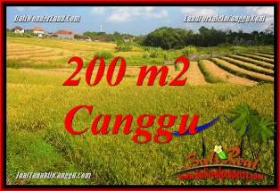 Affordable PROPERTY 200 m2 LAND FOR SALE IN CANGGU BALI TJCG228