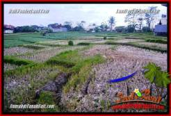 FOR SALE Exotic PROPERTY 300 m2 LAND IN CANGGU BALI TJCG230