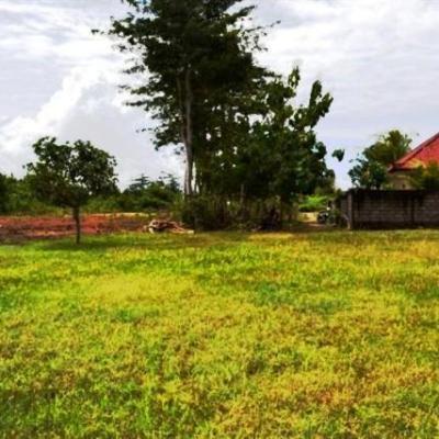 Land in Jimbaran Bali - LJI020