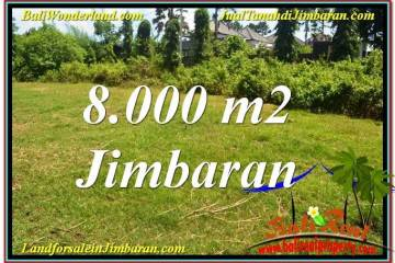 Affordable PROPERTY 8,000 m2 LAND FOR SALE IN JIMBARAN BALI TJJI109