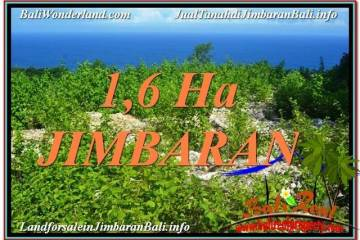 FOR SALE Beautiful 16,000 m2 LAND IN Jimbaran Uluwatu TJJI112