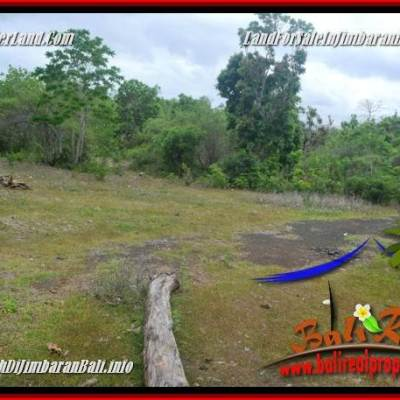 Affordable 2,960 m2 LAND FOR SALE IN JIMBARAN UNGASAN BALI TJJI133A