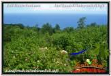 Exotic 16,000 m2 LAND IN Jimbaran Uluwatu FOR SALE TJJI112