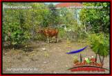 Exotic PROPERTY LAND IN JIMBARAN BALI FOR SALE TJJI134