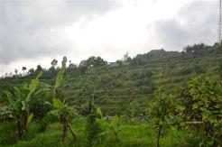 Land for sale in Bedugul Tabanan Bali