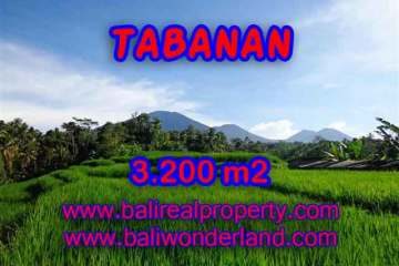 Magnificent Property for sale in Bali, land for sale in Tabanan Bali – TJTB118