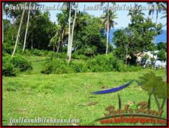 FOR SALE Affordable PROPERTY 7,000 m2 LAND IN TABANAN BALI TJTB200