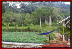 Affordable 52,000 m2 LAND IN TABANAN BALI FOR SALE TJTB164