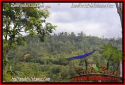 Exotic TABANAN BALI 10,500 m2 LAND FOR SALE TJTB165