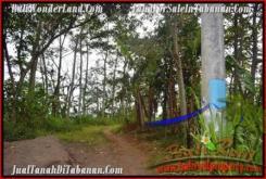 FOR SALE Beautiful PROPERTY LAND IN TABANAN TJTB166