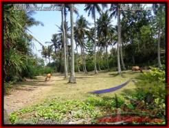 Exotic PROPERTY 2,345 m2 LAND IN Tabanan Selemadeg FOR SALE TJTB158