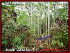 Magnificent PROPERTY Tabanan Selemadeg 3,000 m2 LAND FOR SALE TJTB159
