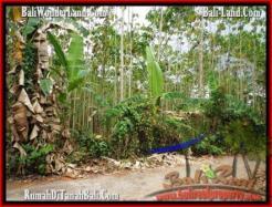 Beautiful PROPERTY 3,000 m2 LAND SALE IN Tabanan Selemadeg TJTB159
