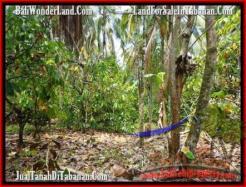 Affordable PROPERTY 2,500 m2 LAND FOR SALE IN Tabanan Selemadeg TJTB160