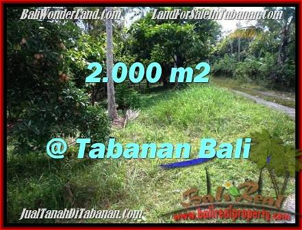 FOR SALE Affordable PROPERTY 2,000 m2 LAND IN TABANAN BALI TJTB206