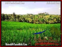 Affordable LAND SALE IN Tabanan Selemadeg BALI TJTB209