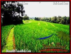 FOR SALE Exotic LAND IN Tabanan Selemadeg BALI TJTB209