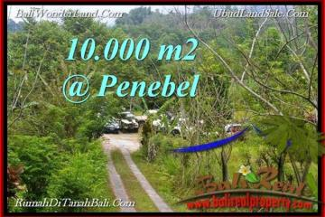 Magnificent 10,000 m2 LAND FOR SALE IN TABANAN BALI TJTB214