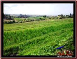 Affordable PROPERTY TABANAN LAND FOR SALE TJTB228