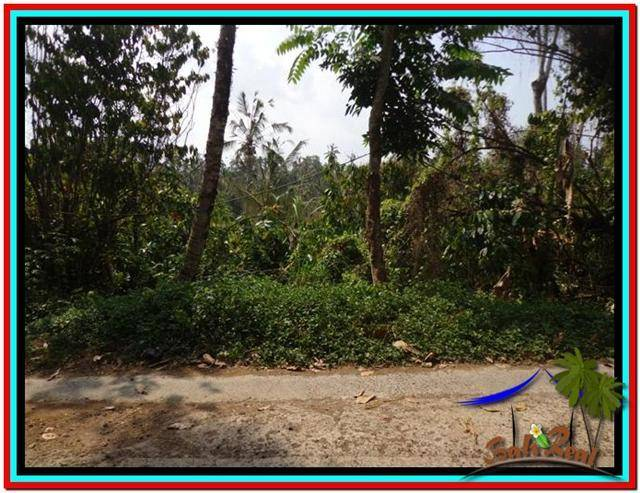 Magnificent 11.000 m2 LAND SALE IN TABANAN BALI TJTB213