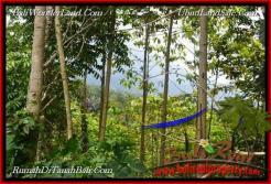 LAND SALE IN TABANAN Jatiluwih BALI TJTB214