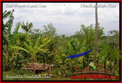 Magnificent LAND FOR SALE IN TABANAN TJTB215