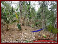 Exotic PROPERTY LAND SALE IN TABANAN TJTB218