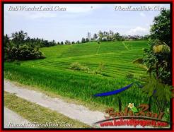 Affordable PROPERTY TABANAN LAND FOR SALE TJTB223