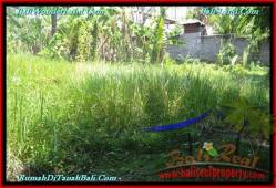 FOR SALE Magnificent PROPERTY LAND IN TABANAN TJTB230